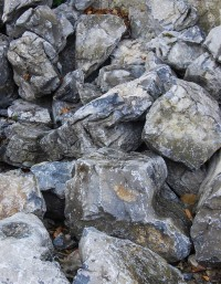 Irish Waterworn Limestone
